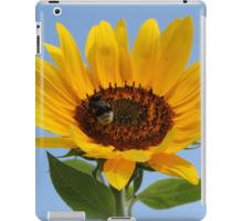 Hülle für iPad